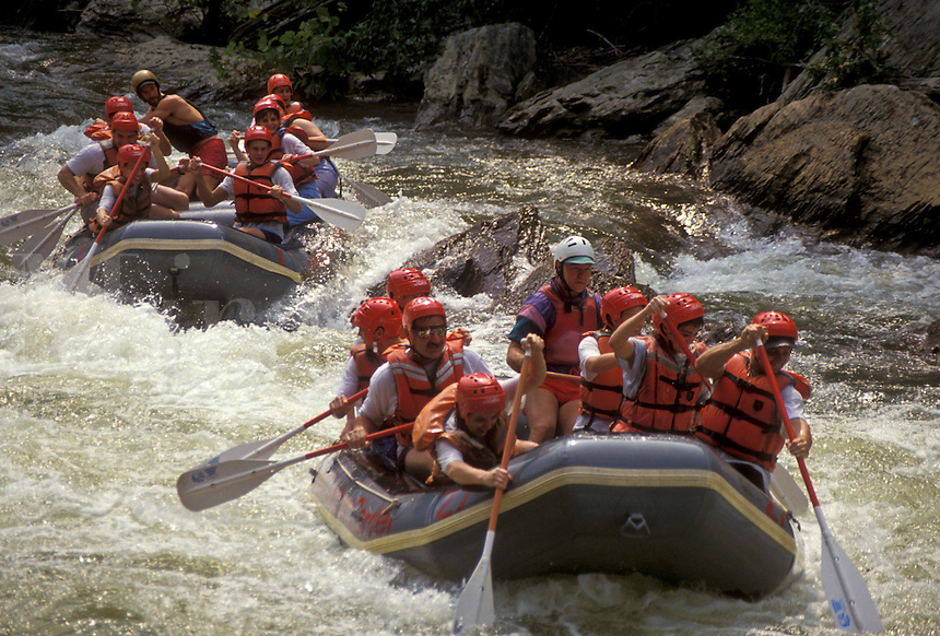 AJ4134, white water rafting, Ocoee River, Tennessee, Appalachian Mountains, Groups of people white water rafting on the Ocoee River in Cherokee National Forest in the state of Tennessee.
