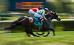 OCEANPORT, NJ - JUL 30: Pioneer Spirit #3, ridden by Jose Lezcano, gets a nose in front at the finish line to win the race In Memory of Jerry Edson on Fourstardave Stakes Day at Saratoga Race Course on August 12, 2017 in Saratoga Springs, New York (Photo by Scott Serio/Eclipse Sportswire/Getty Images)