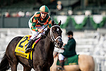 October 03, 2020:  Upstriker at the Claiborne Breeders Futurity Stakes at Keenland Racecourse, in Lexington, Kentucky on October 03, 2020.  Evers/Eclipse Sportswire/CSM