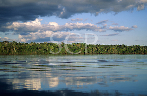 Mato Grosso, Brazil. Amazon; forested river bank with reflection of sky and trees in the moving water of the river.