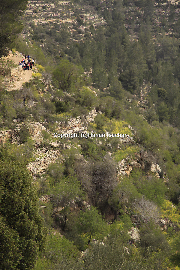 Israel, Jerusalem Mountains. a view of Sataf