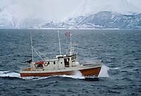 - Norway, fishing boat in navigation near Harstad town..- Norvegia, peschereccio in navigazione nei dintorni della città di  Harstad
