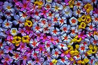 Texture of Flowers in a Spa Bath, Palau, Micronesia