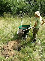 Kind, Junge pflanzt einen Obstbaum, Kirschbaum auf einer Wiese, Streuobstwiese, füllt das Pflanzloch mit nährstoffreicher Erde, Kompost auf