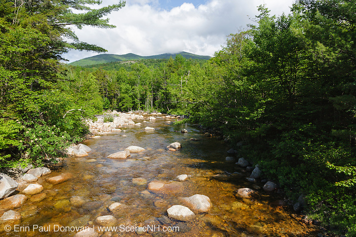 The view from the Thoreau Falls Trail bridge, at North Fork Junction, in the Pemigewasset Wilderness of New Hampshire. About in the middle of this scene is where a timber trestle of the East Branch & Lincoln Logging Railroad (1893-1948) spanned the East Branch of the Pemigewasset River.