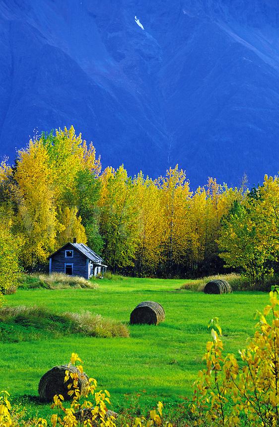 Scenic rural farm landscape with a blue mountain backdrop. Palmer, Alaska.