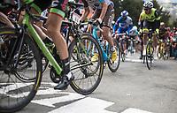 up the infamous Mur de Huy<br /> <br /> 81st La Flèche Wallonne (1.UWT)<br /> One Day Race: Binche › Huy (200.5km)