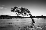 """Mekong Dam Victims - Thailand. A tree in the Mekong River. The building of the Pak Mun Dam in Thailand has lead to strong opposition by the local population as the number of fish and fish species in the river is dramatically reduced because of the dam, affecting more than 20,000 people. Known as """"The Mother of Waters"""", more than 60 million people depend on the Mekong river and its tributaries for food, fresh water, transport and other aspects of daily life. The construction of big dams is now threatening the life of these people aswell as the vital and unique ecosystem of the river."""