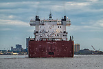 Edwin H Gott freighter arrives in Duluth, MN with seagulls to meet it.