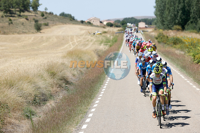 The peloton led by Intermarché-Wanty-Gobert Matériaux during Stage 4 of La Vuelta d'Espana 2021, running 163.9km from Burgo de Osma to Molina de Aragon, Spain. 17th August 2021.    <br /> Picture: Luis Angel Gomez/Photogomezsport | Cyclefile<br /> <br /> All photos usage must carry mandatory copyright credit (© Cyclefile | Luis Angel Gomez/Photogomezsport)