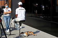 9th September 2021; Nationale di Monza, Monza, Italy; FIA Formula 1 Grand Prix of Italy, Driver arrival and inspection day:  44 Lewis Hamilton GBR, Mercedes AMG Petronas F1 Team and his dog Roscoe