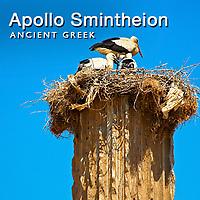 Apollon Smintheion & Alexandria Troas Pictures, Images & Photos, Turkey