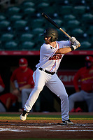 Jupiter Hammerheads J.D. Orr (12) bats during a game against the Palm Beach Cardinals on May 11, 2021 at Roger Dean Chevrolet Stadium in Jupiter, Florida.  (Mike Janes/Four Seam Images)