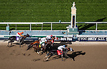 Sahara Sky, ridden by Joel Rosario (left) defeats Wild Dude, ridden by  Rafael Bejarano, Clubhouse Ride, ridden by Tyler Baze,  Big Macher, ridden by Luis Saez and Shakin It Up ridden by Mike Smith to wins the San Carlos Stake Stakes (G2) at Santa Anita Park on March 8, 2014 in Arcadia, California. (Photo by Evers/Eclipse Sportswire)
