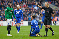Referee Martin Atkinson (R) awards a free kick after a foul to Victor Camarasa of Cardiff City (C) during the Premier League match between Cardiff City and Brighton & Hove Albion at the Cardiff City Stadium, Cardiff, Wales, UK. Saturday 10 November 2018