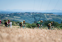 Green Jersey (and later stage winner) Wout van Aert (BEL/Jumbo-Visma) rolling along with the mighty Alps as a backdrop<br /> <br /> Stage 5: Boën-sur-Lignon to Voiron (201km)<br /> 71st Critérium du Dauphiné 2019 (2.UWT)<br /> <br /> ©kramon