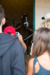 DEL MAR,CA-AUGUST 21: Many people crowds to California Chrome at Del Mar Race Track on August 21,2016 in Del Mar,California (Photo by Kaz Ishida/Eclipse Sportswire/Getty Images)