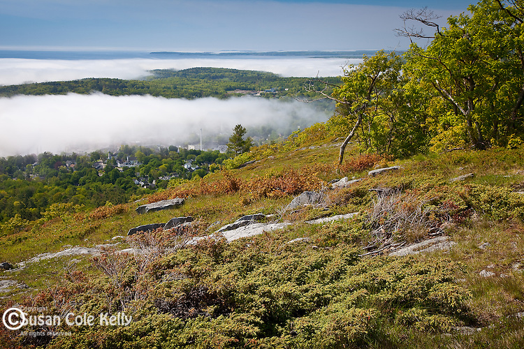 Foggy view of Camden Harbor from Camden Hills State Park, Camden, ME, USA