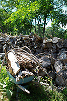 Logs in the backyard