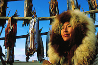 A Native Alaskan Inupiat woman drying salmon in a heavy fur coat. Alaska.