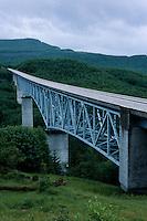 Hoffstadt Creek Bridge Outside of Mt. St. Helens National Volcanic Monument, Toutle, Washington, US