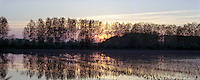 Risaia al tramonto presso Binasco (Milano), nel Parco Agricolo Sud --- Ricefield at sunset near Binasco (Milan), in the Rural Park South