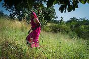 Rekha RAMESH's mother, Baijabai Badri seen working in the fields in Dhawati VIllage of Khaknar block of Burhanpur district in Madhya Pradesh, India.  Photo: Sanjit Das/Panos for ACF