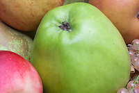 Harvested fruits apples malus domestica Lord Derby
