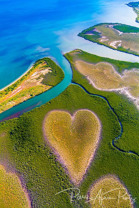 Un coeur naturel dans la mangrove à voh sur la côte Ouest