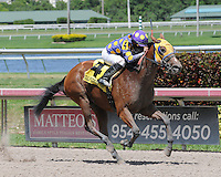 Florida Sire Stakes 2014