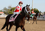 7 February 2009:  Gabriel Saez celebrates his win aboard Honest Man in the Mineshaft Stakes on Risen Star Stakes Day at the Fair Grounds Race Course in New Orleans, Louisiana.