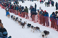Kim Darst team leaves the start line during the restart day of Iditarod 2009 in Willow, Alaska