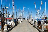 Fishing boats docked at MacMillan Wharf  , Provincetown, MA, USA
