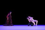 CONSTELLATION<br /> <br /> Chorégraphie : Alonzo King<br /> Décor : Jim Campbell<br /> Musique : Georg Friedrich Haendel, Antonio Vivaldi, Johann Strauss, Sathot, Arvo Pärt<br /> Compositions musicales originales : Ben Juodvalkis, Leslie Stuck<br /> Mezzo-soprano : Maya Lahyani<br /> Pianiste : Hadley McCarroll<br /> Lumières : Axel Morgenthaler<br /> Costumes : Robert Rosenwasser, Colleen Quen<br /> Avec les danseurs de la compagnie<br /> Compagnie : Alonzo King Lines Ballet<br /> Lieu : Théâtre de Chaillot<br /> Ville : Paris<br /> Date : 13/12/2013
