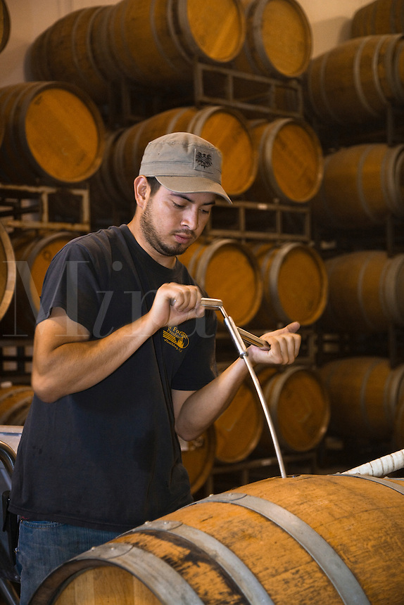 Winery worker stirs the sediment in an OAK BARREL at JOULLIAN VINEYARDS - CARMEL VALLEY, CALIFORNIA
