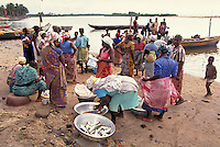 The daily, fresh fish catch is brought to shore by men off the Ghana. Purchases are generally made by the local women; herring and redfish are the primary catches; local fishermen offer their catch to villages along the Ghana coastline. trade, occupa atio