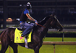 LOUISVILLE, KY - MAY 02: Mo Tom (Uncle Mo x Caroni, by Rubiano) gallops with exercise rider Mario Garcia at Churchill Downs, Louisville KY in preparation for the Kentucky Derby. Owner G M B Racing, trainer Thomas A. Amoss. (Photo by Mary M. Meek/Eclipse Sportswire/Getty Images)