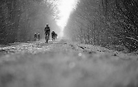 Bernie Eisel (AUT/SKY) leading the way through the infamous Bois de Wallers-Arenberg sector<br /> <br /> 2015 Paris-Roubaix recon with Team SKY