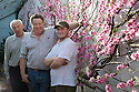 0703/17<br /> <br /> <br /> L/R: Derek Walker (86), Robert Walker (54) and Thomas Walker (25).<br /> <br /> If you are peachy-keen to see some proof that spring really is just around the corner, then feast your eyes on these sweet pink flowers that have finally burst in to bloom in a corner of an old Derbyshire nursery.<br /> <br /> Full story here: https://fstoppress.wordpress.com/2017/03/06/blooming-peaches/<br /> <br /> <br /> Planted one hundred and thirty years ago, the blooms from two peach trees now stretch from floor to ceiling, against a white-washed wall, in a narrow sixty-foot-long glasshouse. They are thought to make one of the country's longest peach blossom walls.<br /> <br /> All Rights Reserved F Stop Press Ltd. (0)1773 550665 www.fstoppress.com