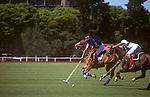 Polo, Pegasus vs. Los Indios, Buenos Aires, Argentina