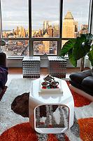 PIC_1263-Abrams House NY