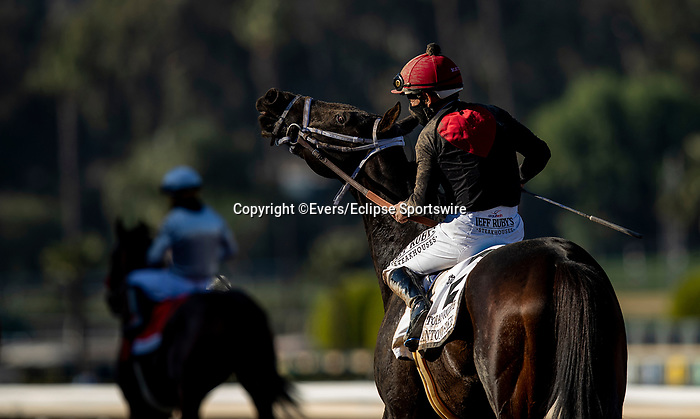 December 26, 2020: Mike Smith cleans the eyes of Kiss Today Goodbye at Santa Anita Park in Arcadia, California on December 26, 2020. Evers/Eclipse Sportswire/CSM