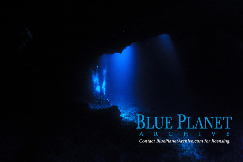 divers in a blue hole, Indonesia