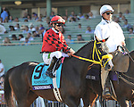 TRINNIBERG, ridden by Willie Martinez and trained by Shivananda Parbhoo, before the Breeders' Sprint at Santa Anita Park in Arcadia, California on November 3, 2012.