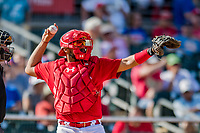 28 February 2019: St. Louis Cardinals catcher Francisco Pena in action during a Spring Training game against the New York Mets at Roger Dean Stadium in Jupiter, Florida. The Mets defeated the Cardinals 3-2 in Grapefruit League play. Mandatory Credit: Ed Wolfstein Photo *** RAW (NEF) Image File Available ***