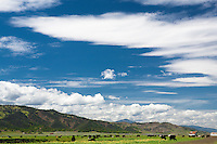 Big blue sky with scattered clouds above cows grazing in Bear Valley, California