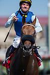 AUG 30,2014:Blue Tone,ridden by Kent Desormeaux,wins the Harry F. Brubaker Stakes at Del Mar in Del Mar,CA. Kazushi Ishida/ESW/CSM