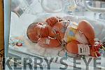 Sean Kearney as a baby in Dublin