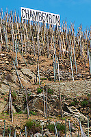 Painted sign black on white: Chambeyron. Terraced vineyards in the Cote Rotie district around Ampuis in northern Rhone planted with the Syrah grape. Ampuis, Cote Rotie, Rhone, France, Europe