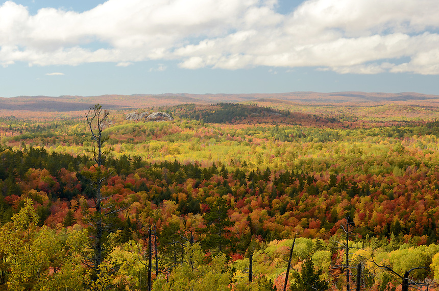 A view of the hills surrounding Marquette, MI during the autumn season.